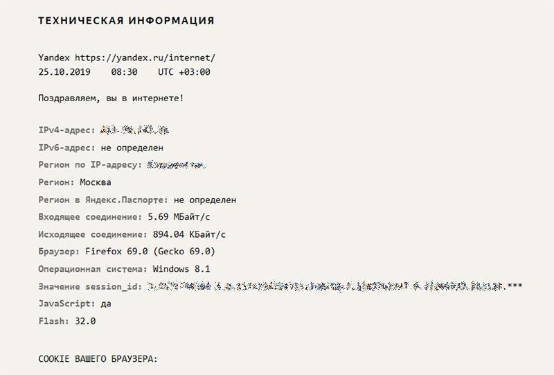 Техническая информация интернетометра